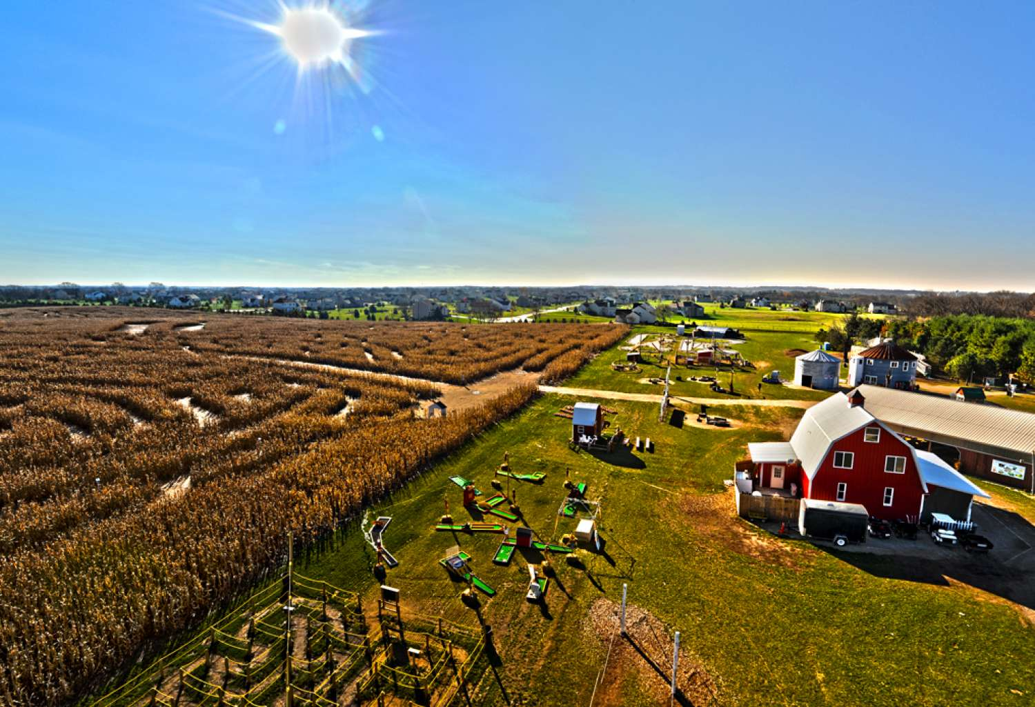 corn maze chicago glasnik