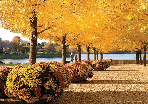 Jesen u Ilinoisu – 7 mesta koje morate da posetite ove godine!