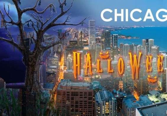 noc vestica chicago glasnik