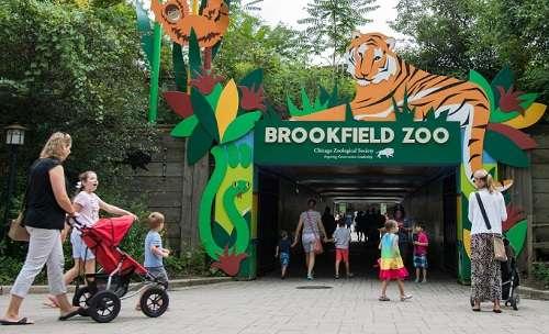 Nakon manifestacije 'Holiday Magic', Brookfield Zoo Vrt zatvara se do marta