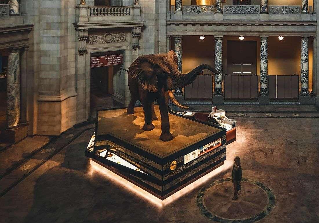 Deset najboljih i najposećenijih muzeja u Americi